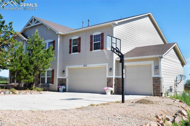 1822 Painter Drive, Monument, CO 80132 (#4616186) :: 8z Real Estate