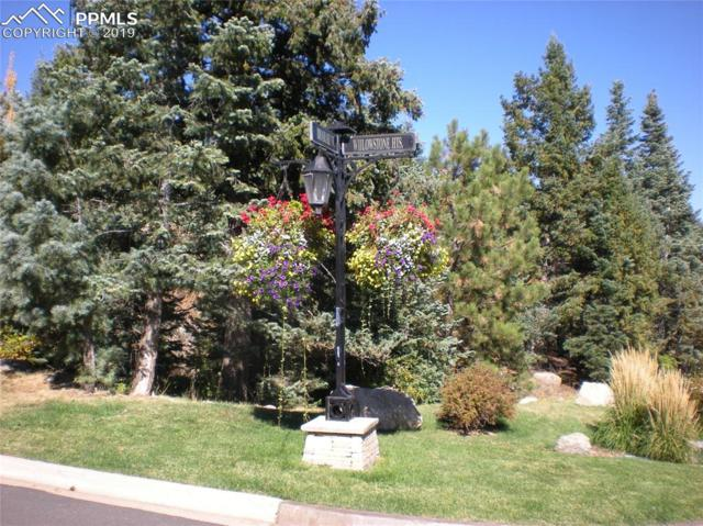 5005 Broadlake View, Colorado Springs, CO 80906 (#4617358) :: 8z Real Estate