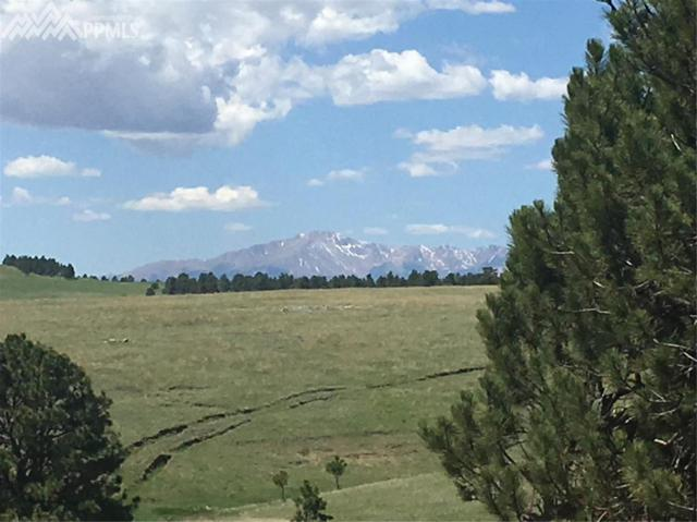 TBD Jones Road, Larkspur, CO 80118 (#4626792) :: 8z Real Estate