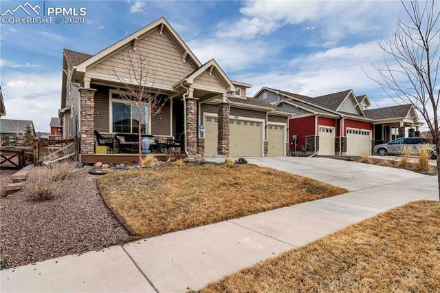 8615 Meadow Tree Trail, Colorado Springs, CO 80927 (#4631306) :: Tommy Daly Home Team