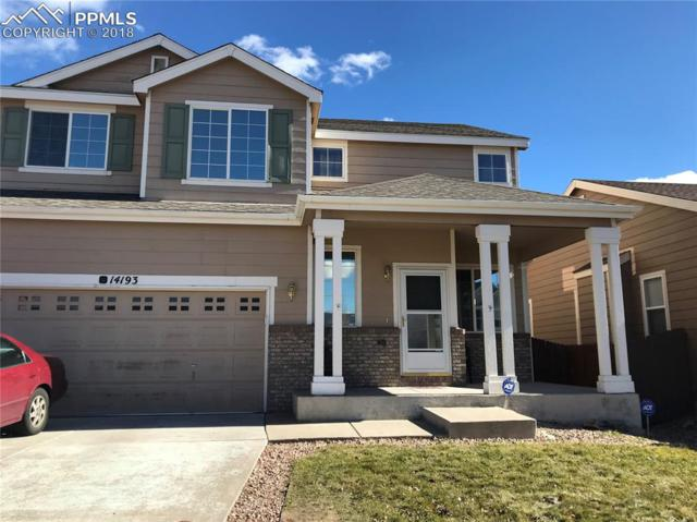 14193 Tern Drive, Colorado Springs, CO 80921 (#4631915) :: Action Team Realty