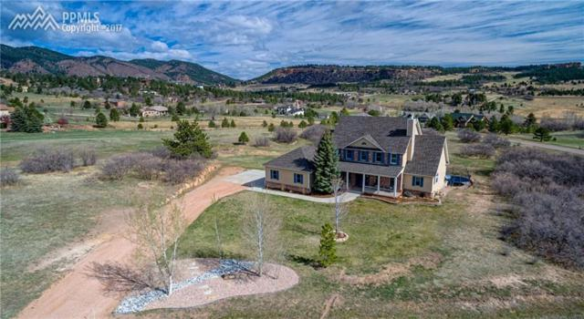 616 Forest View Way, Monument, CO 80132 (#4632884) :: 8z Real Estate