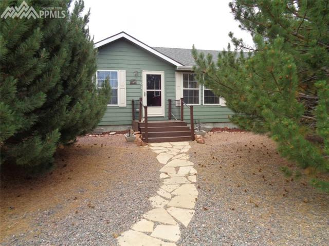 1101 Liptrap Street, Simla, CO 80835 (#4636198) :: 8z Real Estate