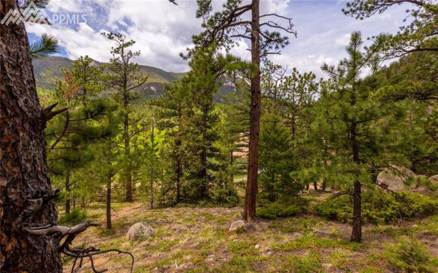 454 Palmer Trail, Manitou Springs, CO 80829 (#4639877) :: Action Team Realty