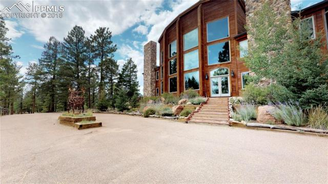 242 Simba Point, Divide, CO 80814 (#4645684) :: 8z Real Estate