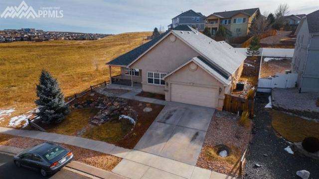 6647 Barrel Race Drive, Colorado Springs, CO 80923 (#4648172) :: Fisk Team, RE/MAX Properties, Inc.