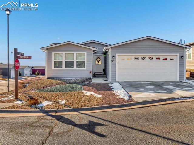 7611 Crested Jay Point, Colorado Springs, CO 80922 (#4654358) :: Fisk Team, RE/MAX Properties, Inc.