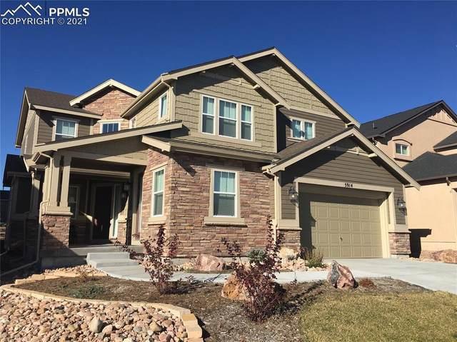 5914 Brave Eagle Drive, Colorado Springs, CO 80924 (#4654495) :: Hudson Stonegate Team