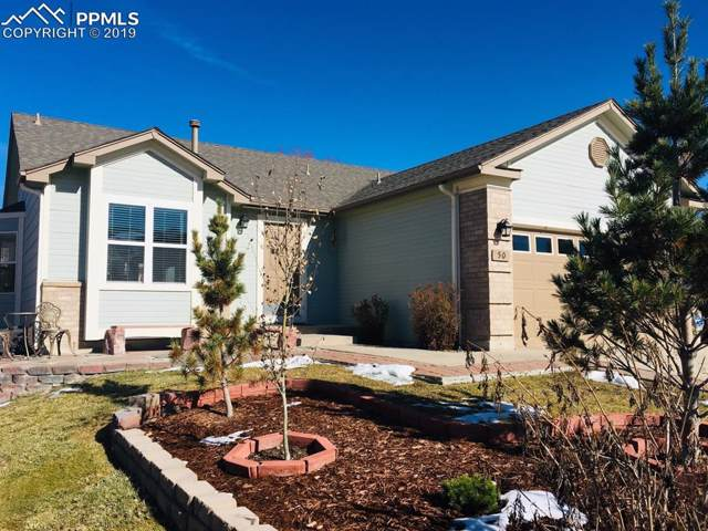 50 Misty Creek Drive, Monument, CO 80132 (#4656094) :: CC Signature Group