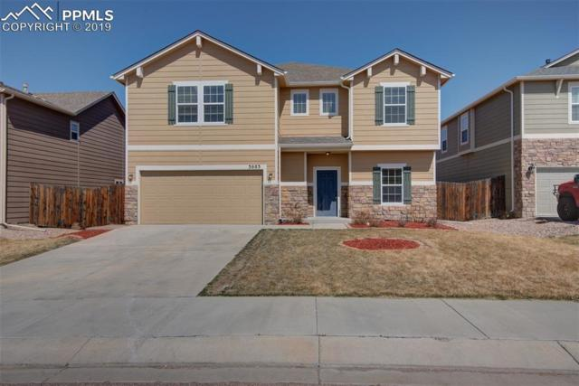 3683 Winter Sun Drive, Colorado Springs, CO 80925 (#4659725) :: Compass Colorado Realty