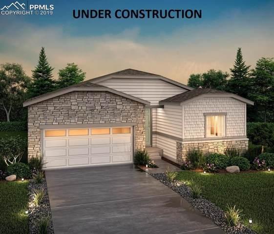 2110 Villageview Lane, Castle Rock, CO 80104 (#4660957) :: CC Signature Group