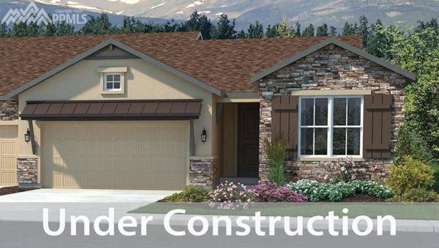 2043 Zenato Court, Colorado Springs, CO 80921 (#4661748) :: The Hunstiger Team