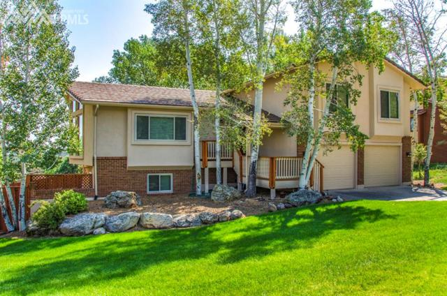 5351 Cliff Point Circle, Colorado Springs, CO 80919 (#4662500) :: Jason Daniels & Associates at RE/MAX Millennium