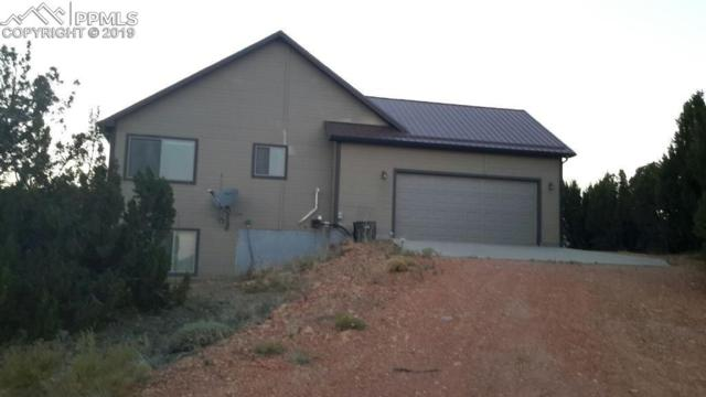 2642 County 521 Road, Walsenburg, CO 81089 (#4664693) :: Action Team Realty