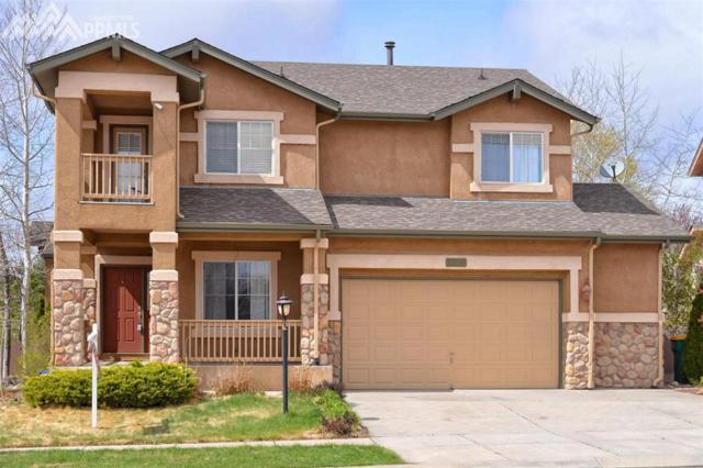 3360 Sugar Pine Way, Colorado Springs, CO 80920 (#4665301) :: 8z Real Estate