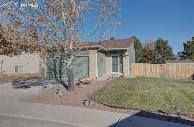 4124 Shelbe Court, Colorado Springs, CO 80911 (#4668188) :: Venterra Real Estate LLC