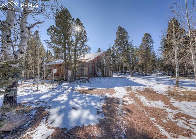 624 County Road 403 Road, Florissant, CO 80816 (#4669292) :: Finch & Gable Real Estate Co.