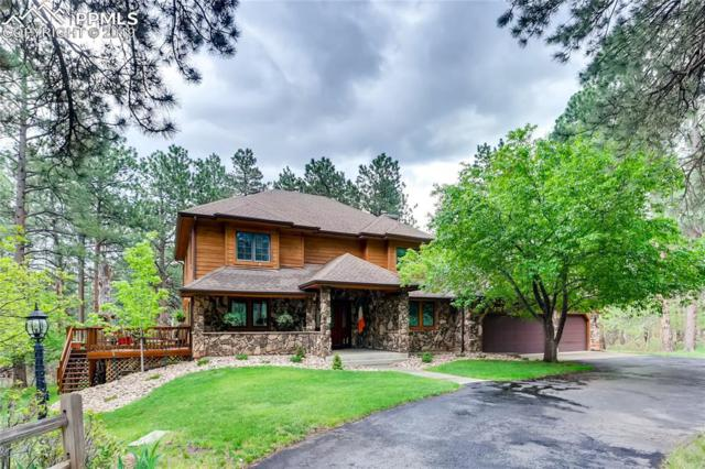 5790 Gerry Lane, Larkspur, CO 80118 (#4671596) :: The Treasure Davis Team