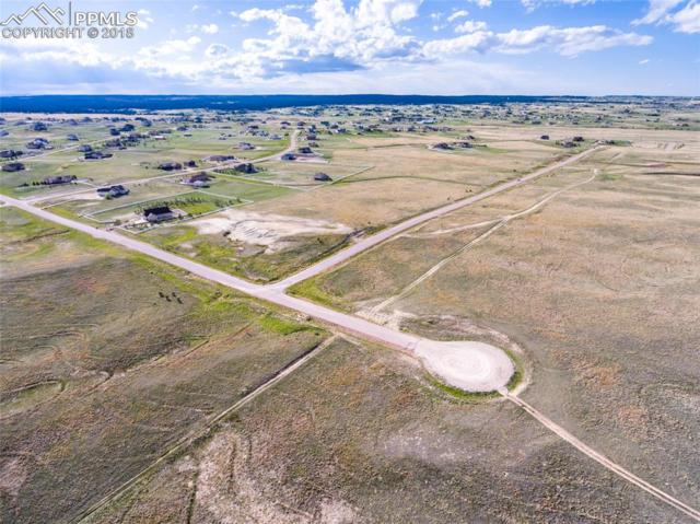 12095 Silver Concho Trail, Elbert, CO 80106 (#4675324) :: Action Team Realty