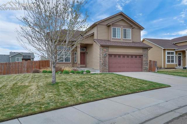 10736 Darneal Drive, Fountain, CO 80817 (#4675959) :: The Treasure Davis Team | eXp Realty