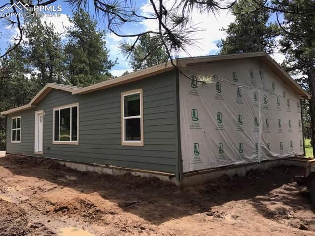 184 Homestead Lane, Florissant, CO 80816 (#4677845) :: Harling Real Estate