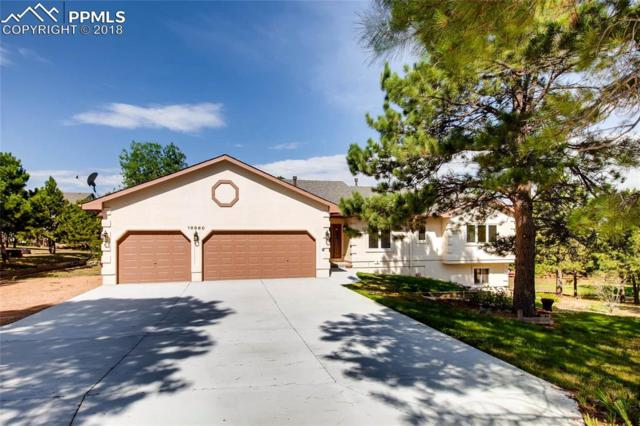 19960 Doewood Drive, Monument, CO 80132 (#4678763) :: Jason Daniels & Associates at RE/MAX Millennium