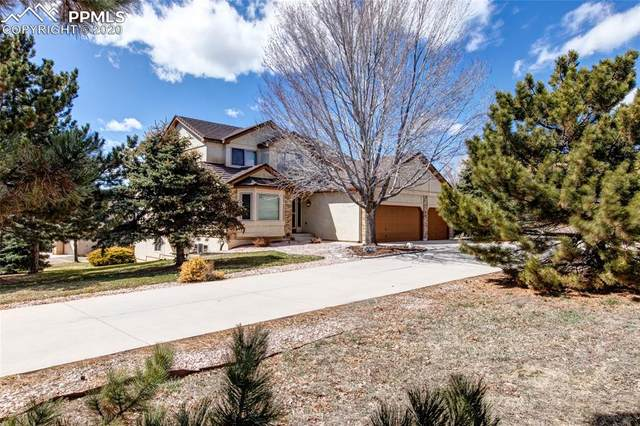 550 Mission Hill Way, Colorado Springs, CO 80921 (#4679596) :: The Treasure Davis Team