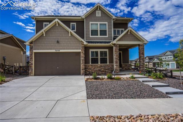 7205 Horizon Wood Lane, Colorado Springs, CO 80927 (#4681219) :: Fisk Team, RE/MAX Properties, Inc.