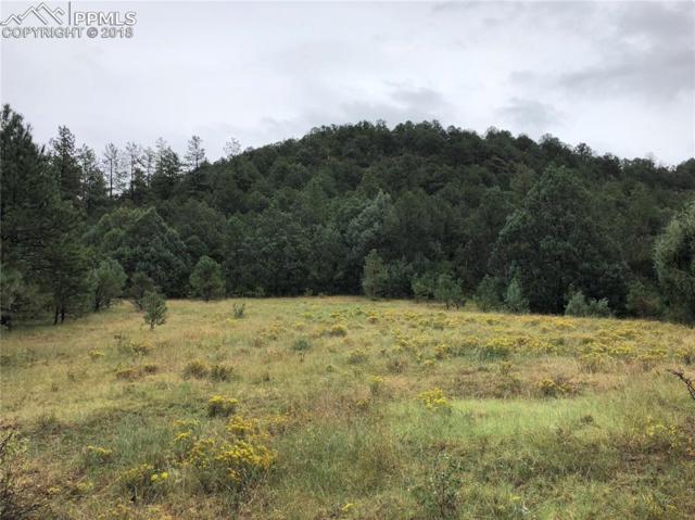 Mountain Road, Walsenburg, CO 81089 (#4681505) :: 8z Real Estate