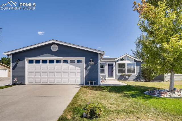 4640 Pika Point, Colorado Springs, CO 80922 (#4683741) :: The Kibler Group