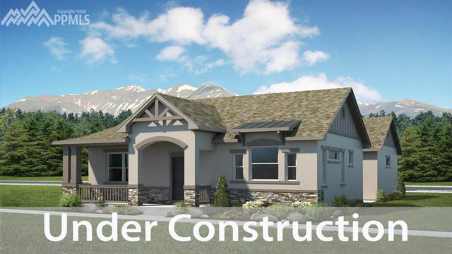2035 Volterra Way, Colorado Springs, CO 80921 (#4684204) :: The Hunstiger Team