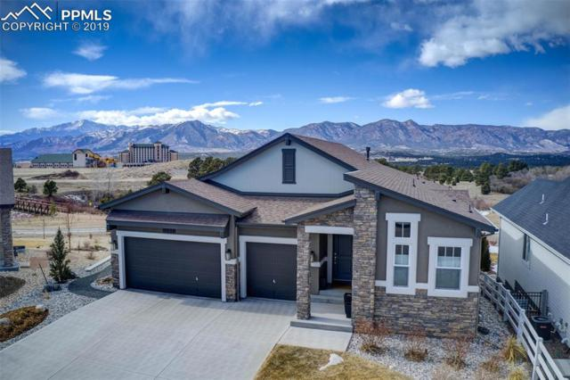 11538 Funny Cide Court, Colorado Springs, CO 80921 (#4686086) :: The Treasure Davis Team