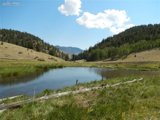 TBD Fawn Drive, Guffey, CO 80820 (#4690187) :: 8z Real Estate