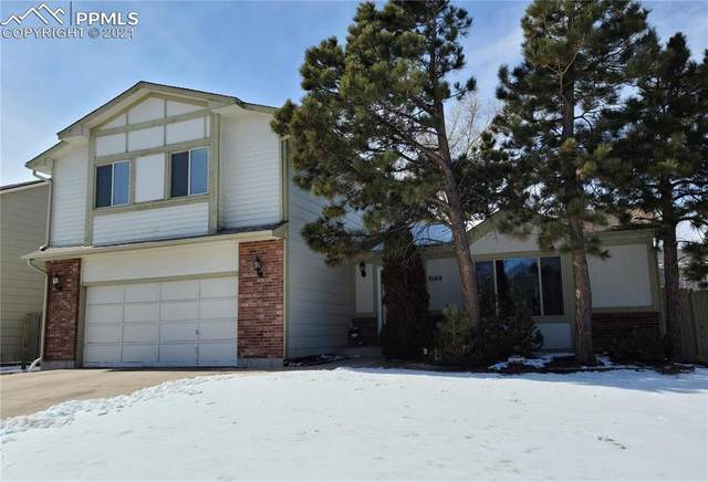 8140 Lythrum Drive, Colorado Springs, CO 80920 (#4693687) :: 8z Real Estate