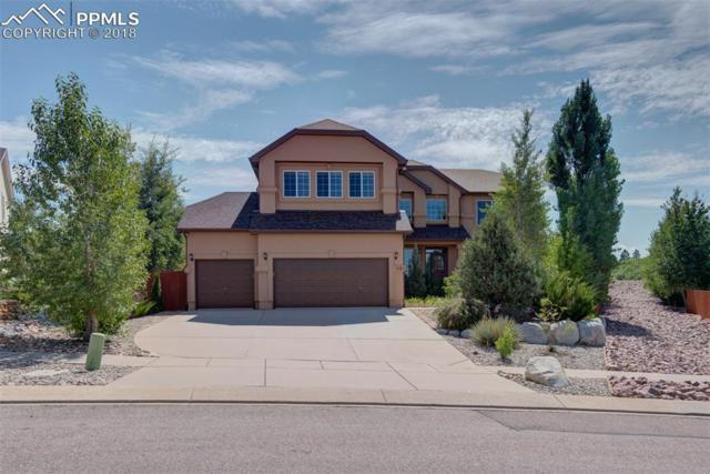 1083 Prickly Pear Place, Colorado Springs, CO 80921 (#4695741) :: Action Team Realty