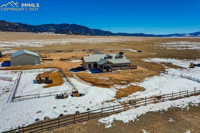 680 San Juan Street, Lake George, CO 80827 (#4698750) :: CC Signature Group