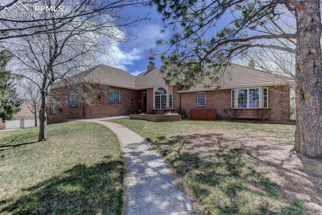 3185 N Electra Drive, Colorado Springs, CO 80906 (#4700022) :: CC Signature Group