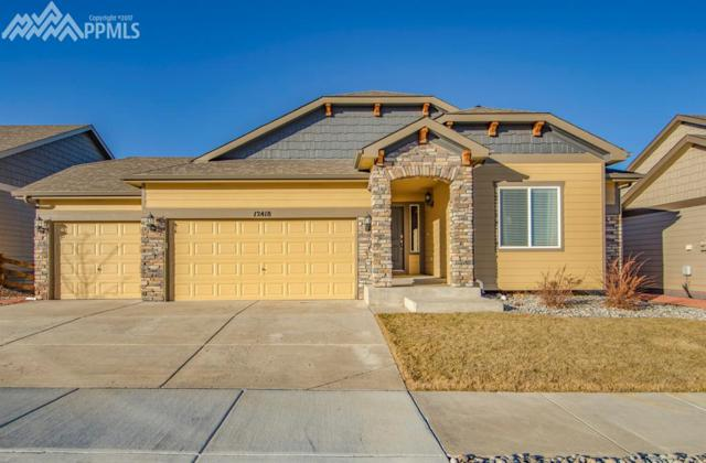 12418 Salmon Stone Point, Colorado Springs, CO 80921 (#4714649) :: Action Team Realty
