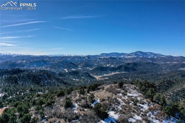 635 N Pine Vista, Canon City, CO 81212 (#4714653) :: 8z Real Estate