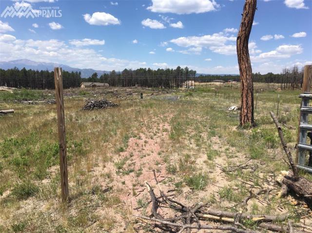 7535 Pinery Circle, Colorado Springs, CO 80908 (#4714758) :: Action Team Realty