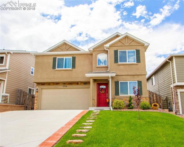 7756 Crestone Peak Trail, Colorado Springs, CO 80924 (#4717805) :: The Daniels Team