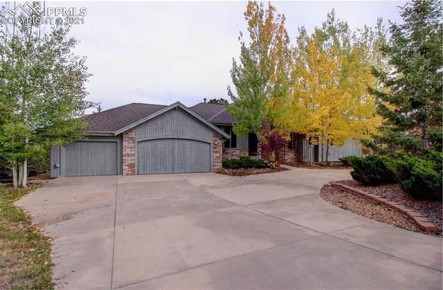 13952 Douglas Ranch Drive, Pine, CO 80470 (#4721660) :: Simental Homes | The Cutting Edge, Realtors