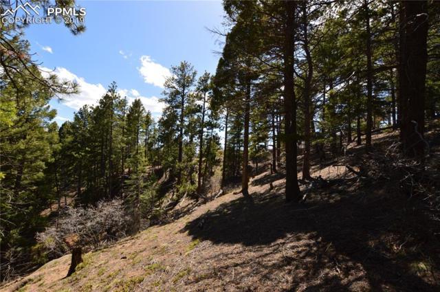 0 Quaking Aspen Lane, Larkspur, CO 80118 (#4724326) :: Compass Colorado Realty