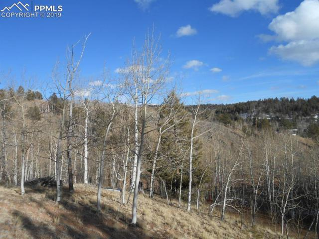 137 No Name Lane, Cripple Creek, CO 80813 (#4728823) :: Tommy Daly Home Team