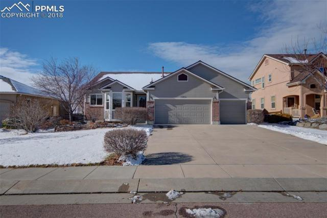 3682 Tail Wind Drive, Colorado Springs, CO 80911 (#4729613) :: Venterra Real Estate LLC