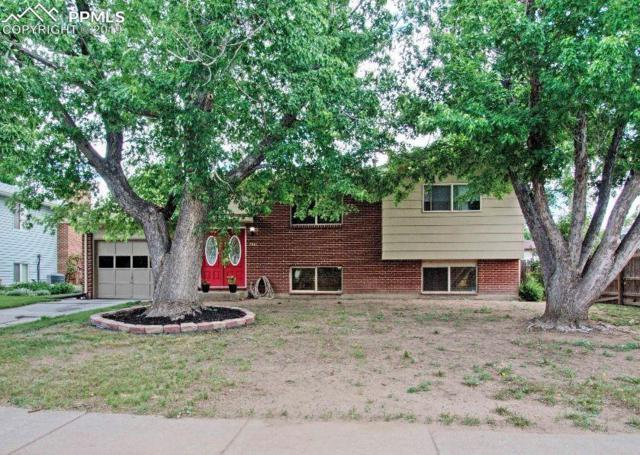 7061 Cleveland Court, Colorado Springs, CO 80911 (#4729812) :: The Treasure Davis Team
