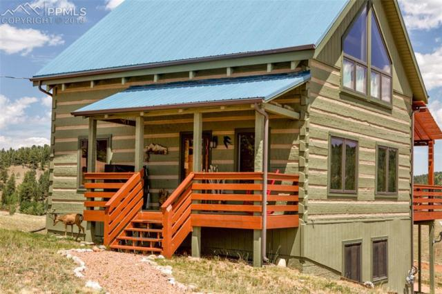 524 Maroon Lake Circle, Divide, CO 80814 (#4735383) :: Jason Daniels & Associates at RE/MAX Millennium