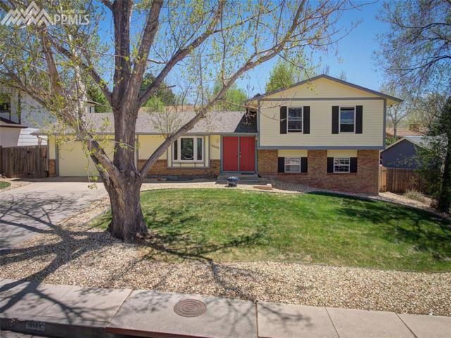 5008 Harvest Road, Colorado Springs, CO 80917 (#4737841) :: 8z Real Estate