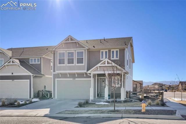 8125 Plumwood Circle, Colorado Springs, CO 80927 (#4738405) :: Colorado Home Finder Realty