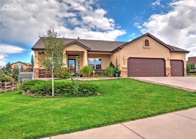 208 Green Rock Place, Monument, CO 80132 (#4738627) :: 8z Real Estate